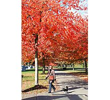 Walking the Dog in a Park, Vancouver City, Canada  Photographic Print
