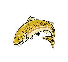Rainbow Trout Jumping Cartoon Isolated Photographic Print