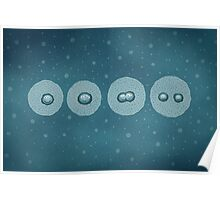 Cell Division Poster