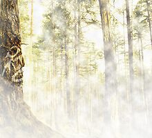 The Forest Spirit by Mark Gauti
