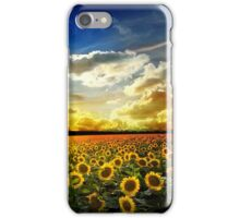 OVer View iPhone Case/Skin