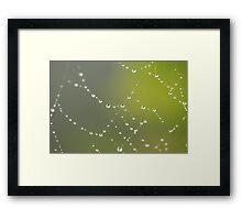 Pearls of Wisdom Framed Print
