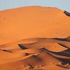 Dunes of Erg Chebbi, Morocco by helenlloyd