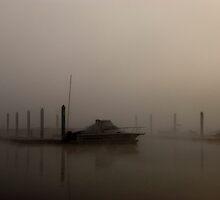 Classified Fog  by Jenny Ryan