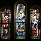 Stained Glass Windows by Pamela Jayne Smith