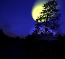 At night by simaso