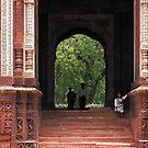 India - New Delhi नई दिल्ली by Thierry Beauvir