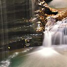 New York's Watkins Glen X by PJS15204