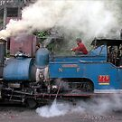India - Darjeeling - Toy train by Thierry Beauvir