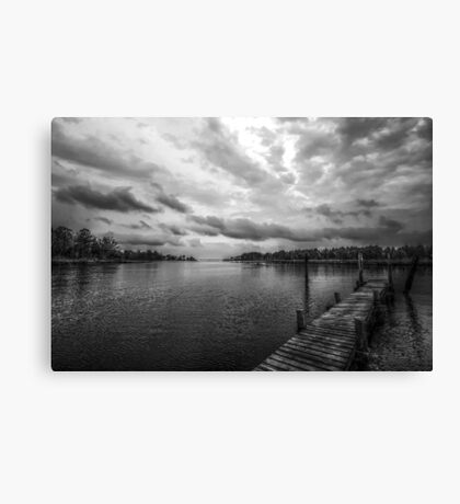 Out of the Bayou Canvas Print