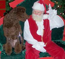 Santa, I've been good by StephenieRenee