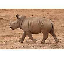 Run Baby Rhino Run Photographic Print