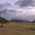 Mount Cook National Park by Paul Mercer