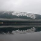 Loch Chon Panorama by Susan Dailey