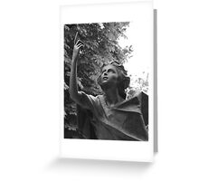 Statue Series - Looking to the sky for answers Greeting Card