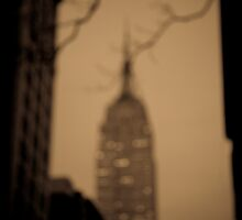 The Empire State Building by Gerald Holubowicz