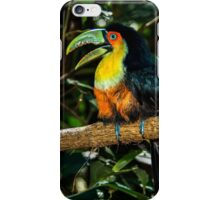 Toucan No. 3 of Iguazu iPhone Case/Skin