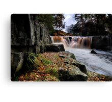 Nelly Ayre Foss Canvas Print