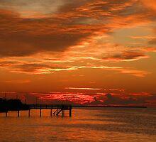 Pine Island Sunset by Rosalie Scanlon