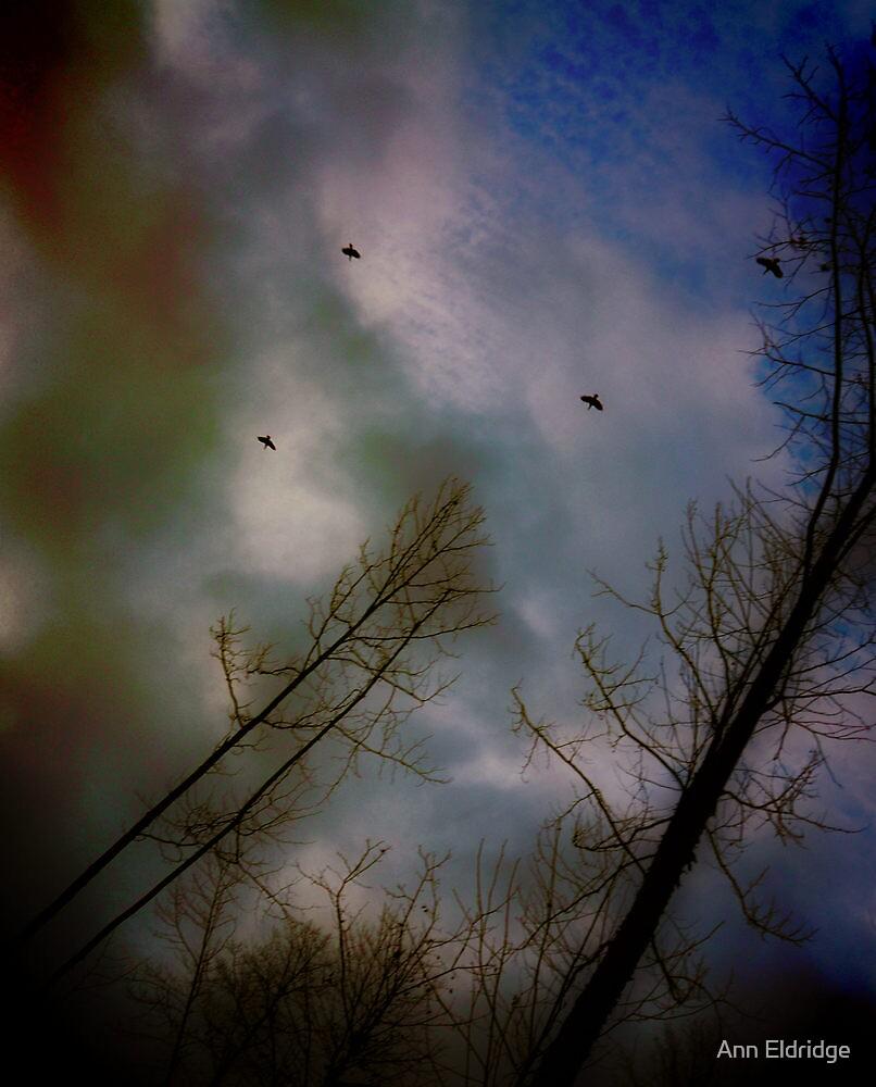 Flight o' Wild Turkeys by Ann Eldridge