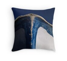 reflection 19 Throw Pillow
