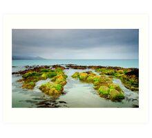 Seaweed Rocks, Bicheno Art Print