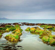 Seaweed Rocks, Bicheno by Kim Maisch