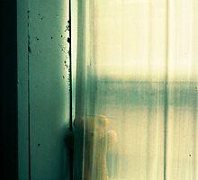 little teddy bear hiding  by Juilee  Pryor