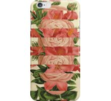 Floral Stripes iPhone Case/Skin