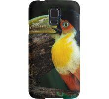 Toucan No. 5 of Iguazu Samsung Galaxy Case/Skin