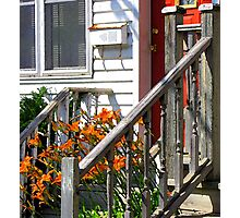 Lilies At the Door Photographic Print