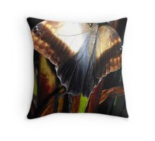 Caramel and Black Throw Pillow