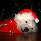 Awaiting Christmas by Sarah Jennings