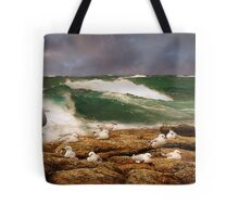 The (almost) vanishing seagull Tote Bag