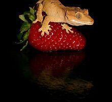 Fruity by Angi Wallace
