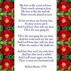"""My love is like a red, red rose"" - Burns (anglicised) by Philip Mitchell"
