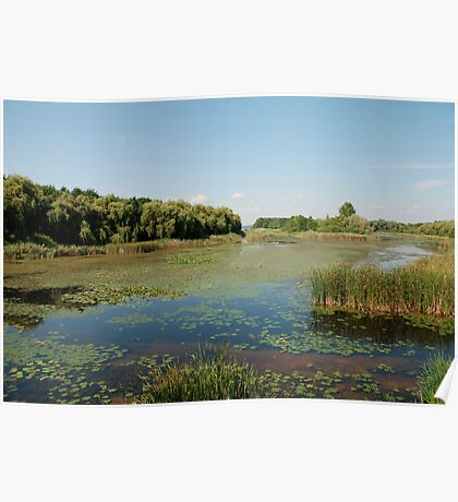 Wetland at Kanyavar Island  Poster