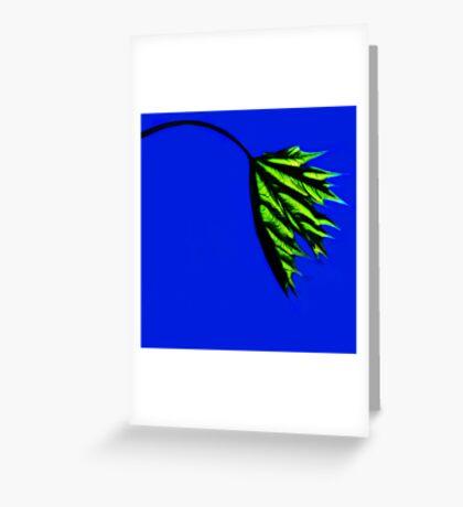 Shadow & light Greeting Card