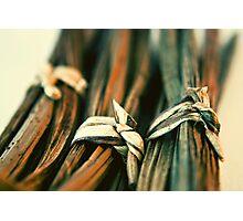 Knots Photographic Print