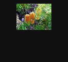Banksia in Flower  T-Shirt