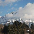 Snowy Mountain, Friuli  by jojobob