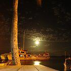 Full moon in Fiji by jpbradshaw