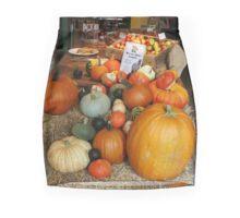 Cucurbita Mini Skirt