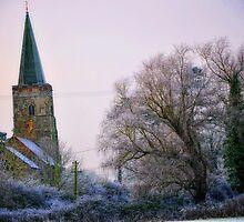 Winter view. by Karen  Betts