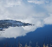 Spring in the North by AylaM