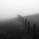 Mount Aran, Pembrokeshire by Xander Ashwell