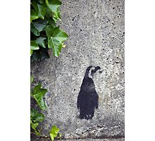 Stencil Penguin Photographic Print