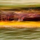 Dragon Boat Race by Catherine Hadler
