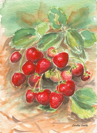 Strawberries by Caroline  Lembke
