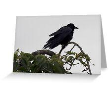Crow on a Tree Greeting Card